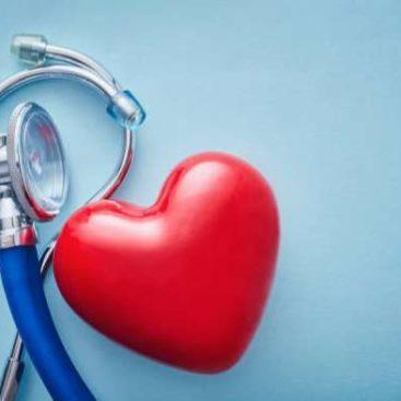 Herzerkrankungen - Tierarzt blu beethoven