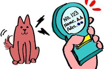 Kennzeichnung - Tierarzt blu beethoven